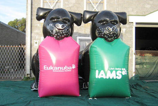 Branded dogs