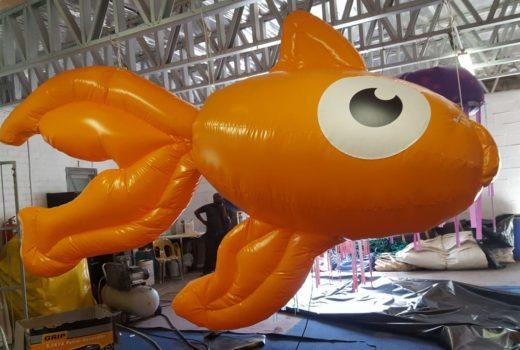 Blinky, Goldfish Live